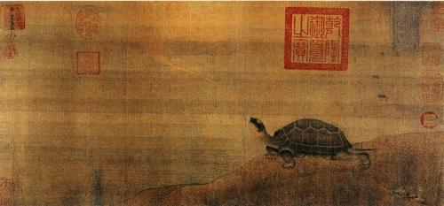 zhan-ziqian-turtle500