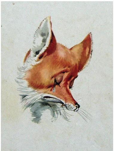 pinocchio-fox