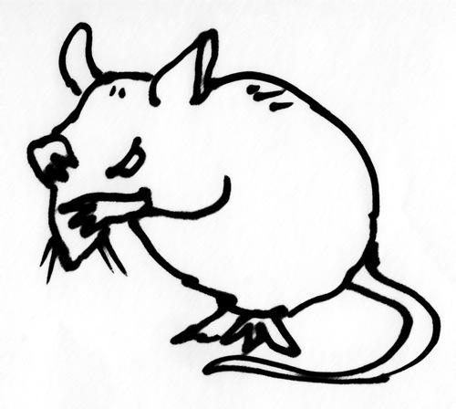 Crazy Rat Drawing Pruning-rat.jpg