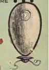 egg-6