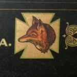 foxtype thumb