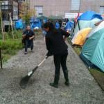 Feral gardener occupying Boston's Dewey Square