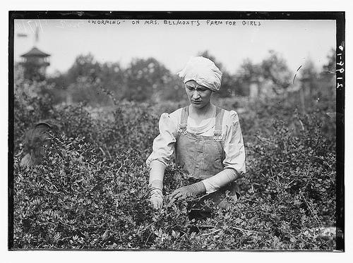 1910 farm