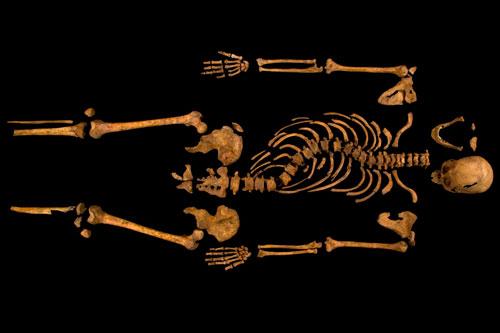 r3_skeleton