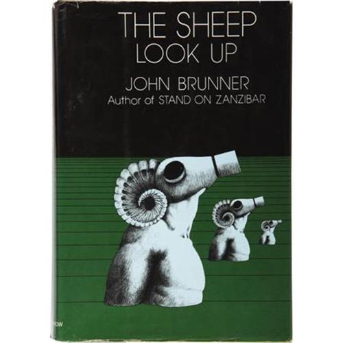 brunner sheep