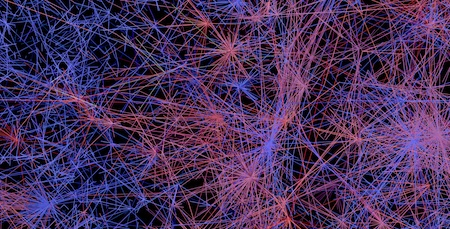 whole_network6 copy
