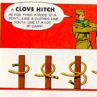 clove thumb