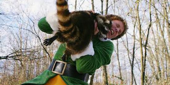 Elf-Movie-Raccoon-Hug