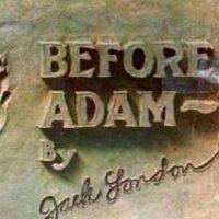 adam-thumb