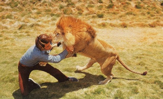 wild_kingdom_peter_gros_1